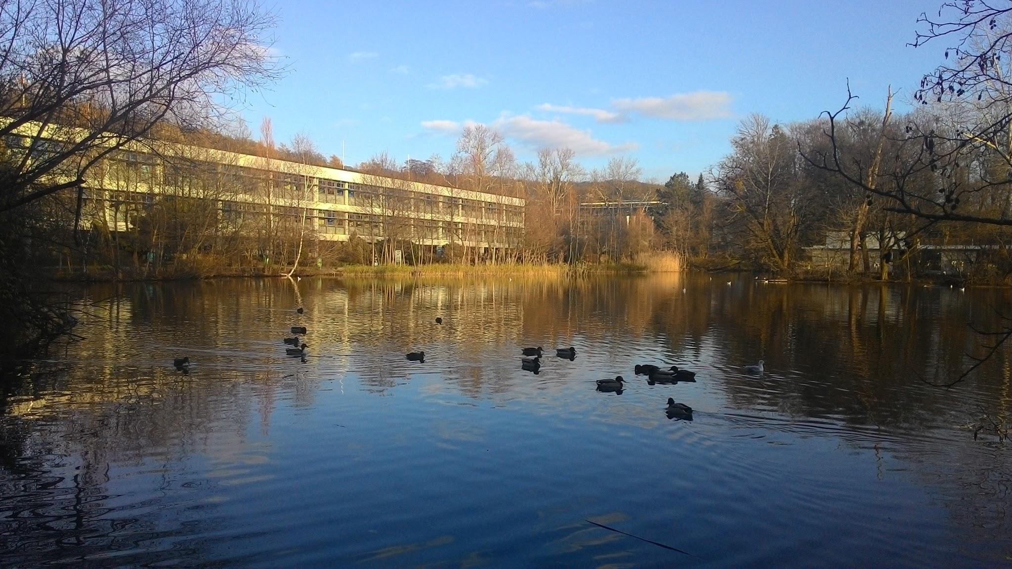 Johannes Kepler University Linz.jpg